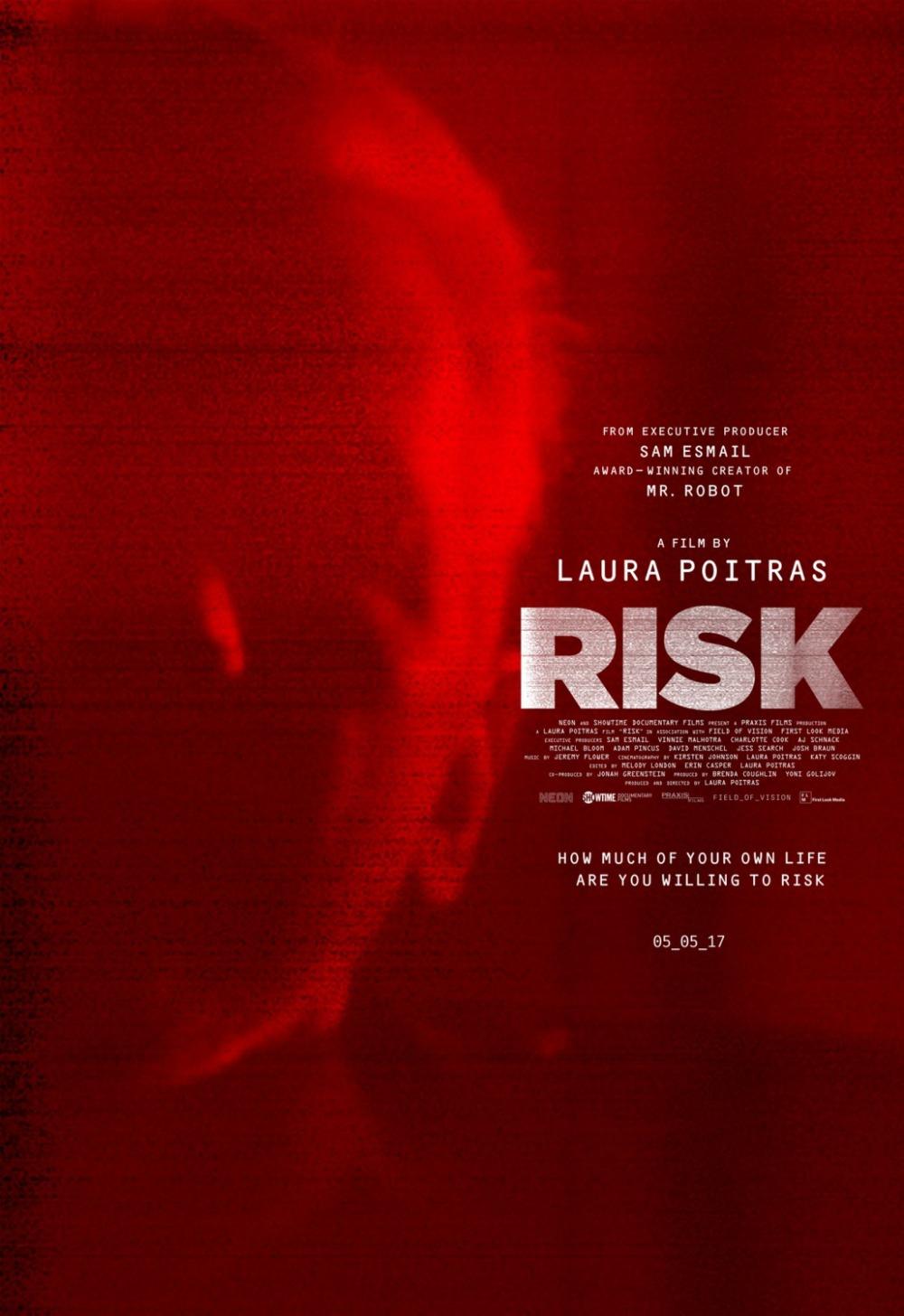 Risk documentary poster